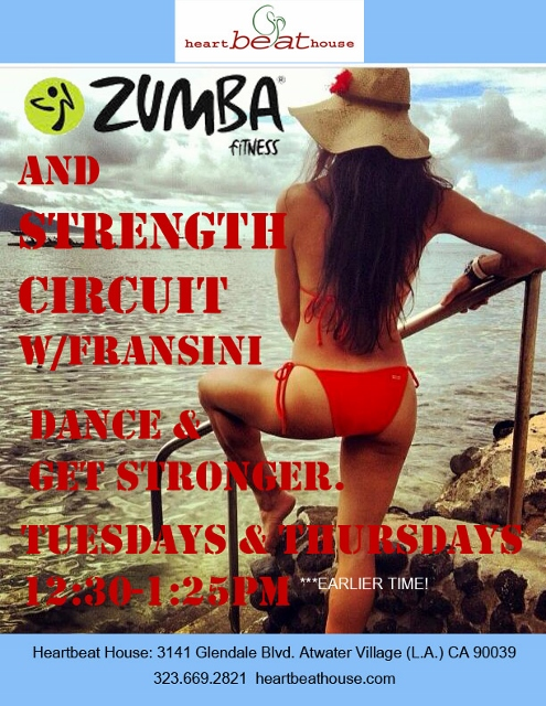 Zumba with Strength Circuit (495x640) (3)